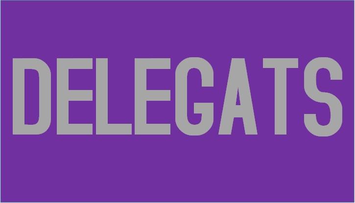 Ja tenim els delegats !