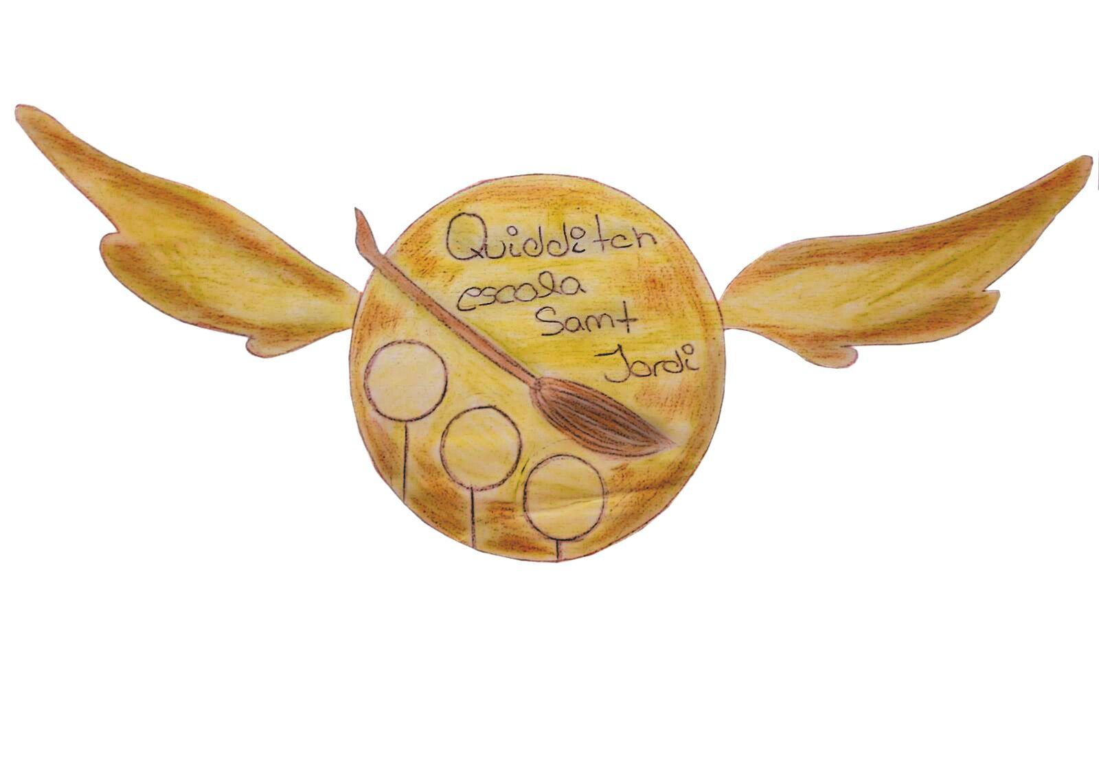 Fundem un equip de Quidditch a l'escola!